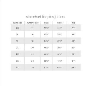 Arizona jean company jeans arizona jean co juniors plus skinny leg